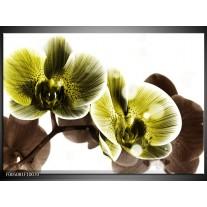 Foto canvas schilderij Orchidee   Geel, Grijs