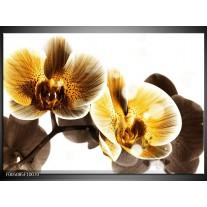 Foto canvas schilderij Orchidee | Geel, Bruin, Wit