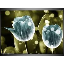 Foto canvas schilderij Tulp | Blauw, Groen