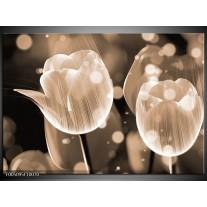 Foto canvas schilderij Tulp | Grijs