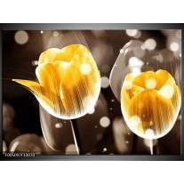 Foto canvas schilderij Tulp   Geel, Oranje, Bruin