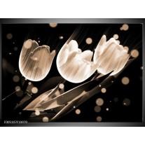 Foto canvas schilderij Tulp | Wit, Zwart, Grijs