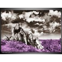 Foto canvas schilderij Natuur | Paars, Grijs