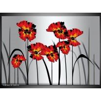 Foto canvas schilderij Tulp | Oranje, Zwart, Grijs