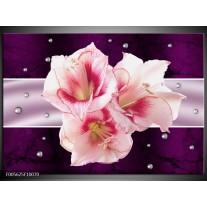 Foto canvas schilderij Tuin | Paars, Roze, Wit