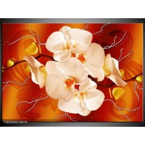 Foto canvas schilderij Orchidee   Rood, Oranje, Creme