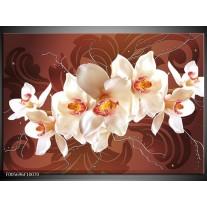 Foto canvas schilderij Orchidee | Bruin, Creme