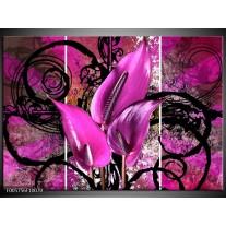Foto canvas schilderij Anthurium | Paars, Zwart