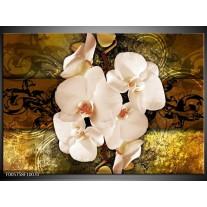 Foto canvas schilderij Orchidee | Bruin, Goud, Creme