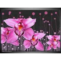 Foto canvas schilderij Orchidee   Roze, Grijs