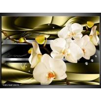 Foto canvas schilderij Orchidee   Groen, Creme