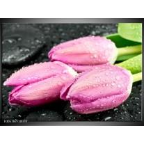 Foto canvas schilderij Tulpen | Roze, Zwart