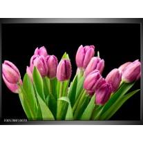 Foto canvas schilderij Tulpen | Roze, Zwart, Groen