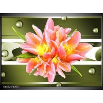 Foto canvas schilderij Modern   Groen, Roze