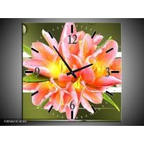 Wandklok op Canvas Modern   Kleur: Groen, Roze   F005823C