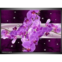 Foto canvas schilderij Orchidee   Paars
