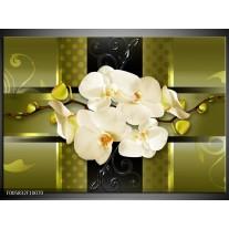 Foto canvas schilderij Orchidee | Groen