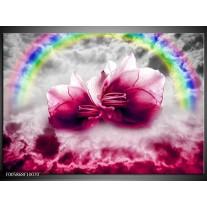 Foto canvas schilderij Lelie | Roze, Grijs