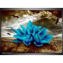 Foto canvas schilderij Lelie | Blauw, Grijs