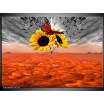 Foto canvas schilderij Zonnebloem | Oranje, Grijs, Geel