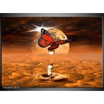 Foto canvas schilderij Vlinder | Bruin, Goud
