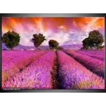 Foto canvas schilderij Landschap | Roze, Oranje, Grijs