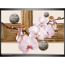 Foto canvas schilderij Orchidee | Roze, Grijs, Bruin