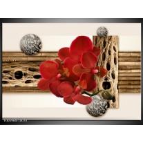 Foto canvas schilderij Orchidee | Rood, Bruin, Wit