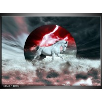 Foto canvas schilderij Paard   Rood, Grijs, Wit