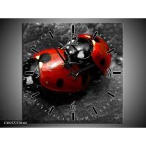 Wandklok op Canvas Lieveheersbeestje | Rood, Zwart, Grijs | F005972C