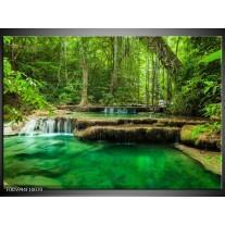 Glas schilderij Natuur | Groen