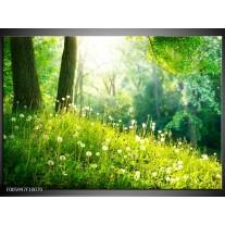 Glas schilderij Natuur   Groen