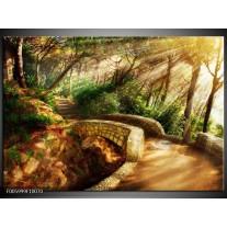 Foto canvas schilderij Natuur   Bruin, Groen