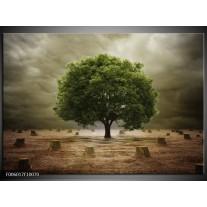 Foto canvas schilderij Boom | Groen, Grijs, Bruin
