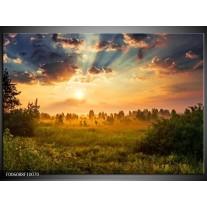 Foto canvas schilderij Natuur | Bruin, Groen