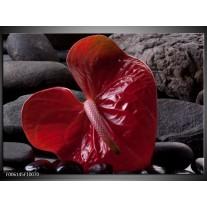 Foto canvas schilderij Spa | Rood, Grijs, Zwart