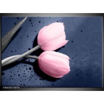 Foto canvas schilderij Tulpen | Roze, Grijs
