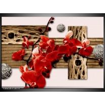 Foto canvas schilderij Orchidee   Rood, Bruin, Creme