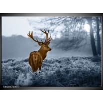 Foto canvas schilderij Hert | Bruin, Blauw, Grijs