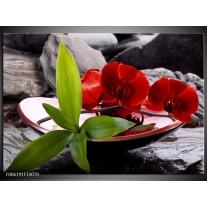 Glas schilderij Orchidee | Rood, Groen, Grijs