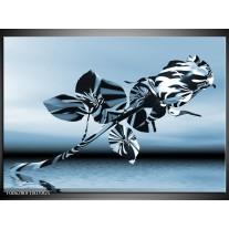 Glas Schilderij Bloem, Roos | Blauw, Zilver