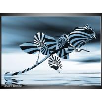 Glas Schilderij Bloem, Roos   Blauw, Zilver