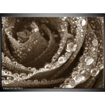 Glas Schilderij Bloem, | Sepia