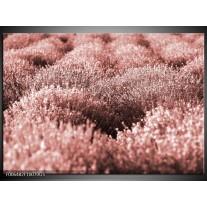 Glas Schilderij Bloemen   Bruin, Rood