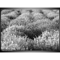Glas Schilderij Bloemen | Grijs, Zwart