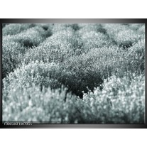 Glas Schilderij Bloemen | Grijs, Groen