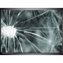 Glas Schilderij Bloem | Grijs, Groen