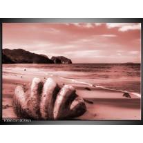 Glas Schilderij Schelp, Strand | Bruin, Rood