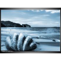Glas Schilderij Schelp, Strand | Blauw