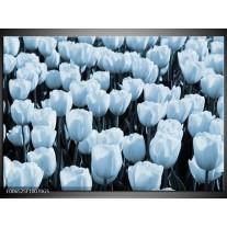 Glas Schilderij Bloem, Tulpen | Blauw